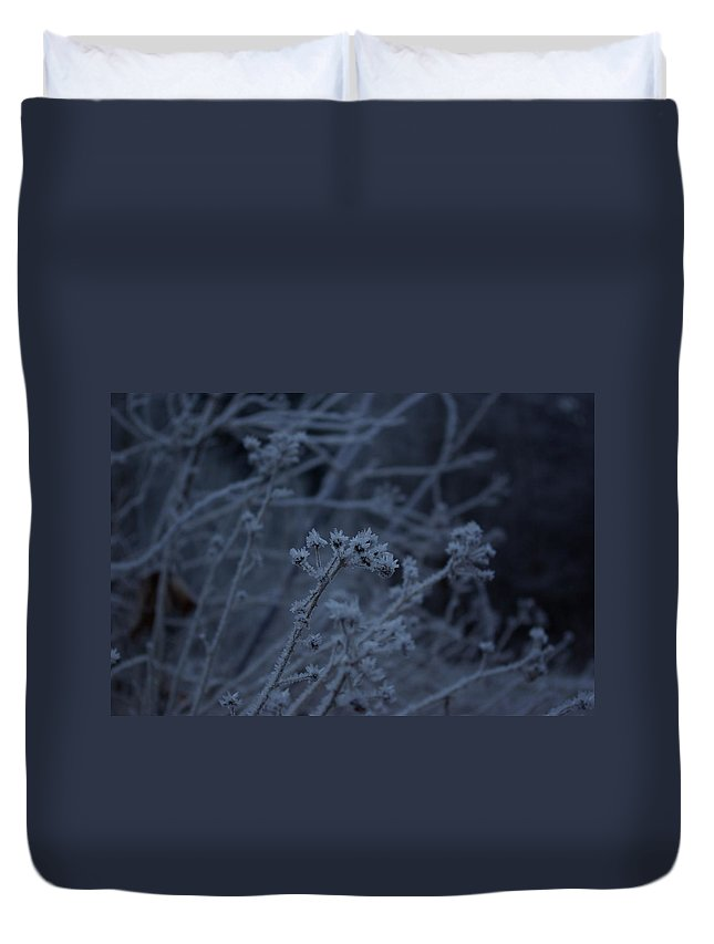 Frozen Duvet Cover featuring the photograph Frozen Buds by Cindy Johnston