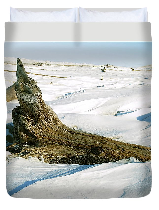 Snow Duvet Cover featuring the photograph Frozen Shores by Michael Peychich