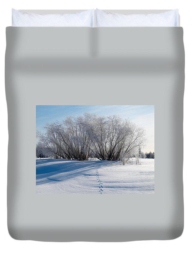 Talvi Duvet Cover featuring the photograph Frozen Views 4 by Jouko Lehto