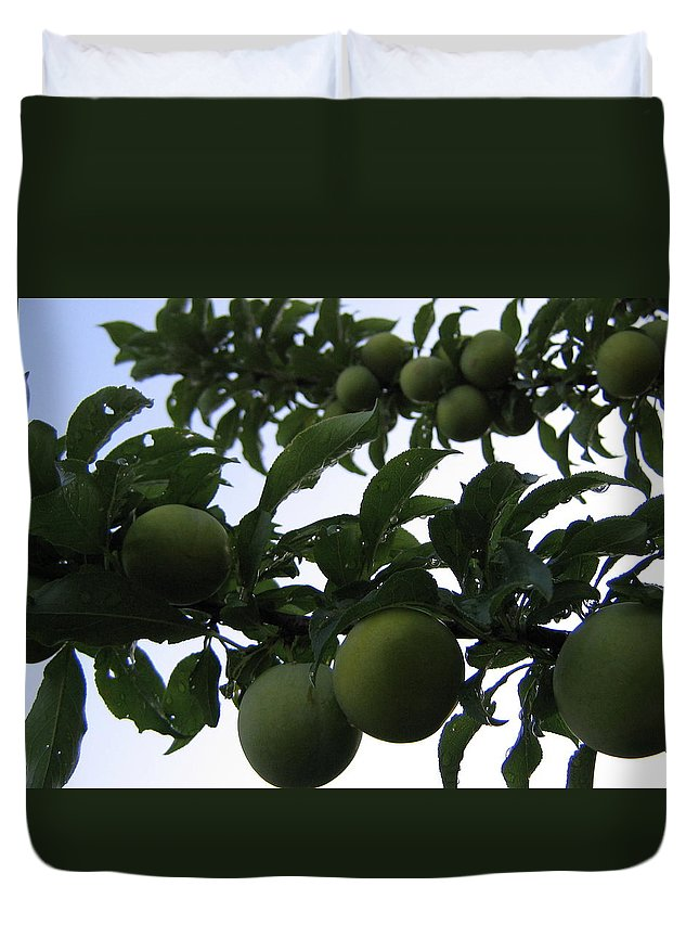 Plums Duvet Cover featuring the photograph Fruit And Sky_raindrops by Barbara Yearty