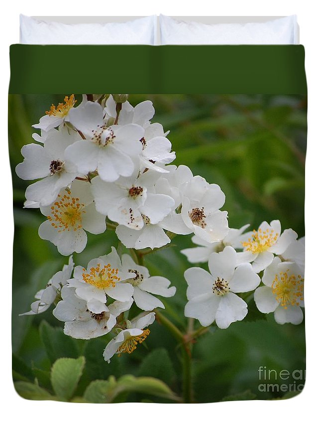 Duvet Cover featuring the photograph Fruity Potential by David Lane
