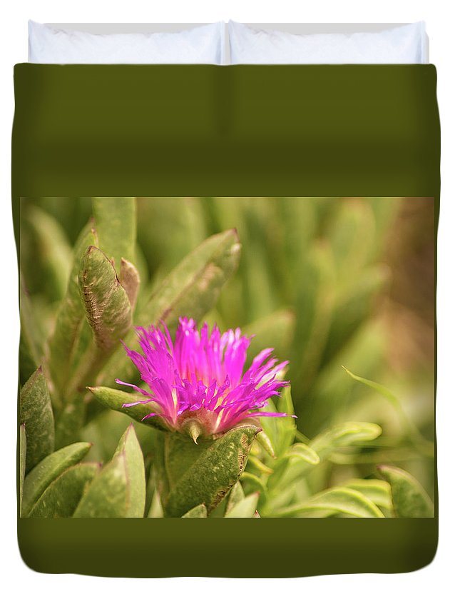 Fuchsia Duvet Cover featuring the photograph Fuchsia Bloom by Emily Sims