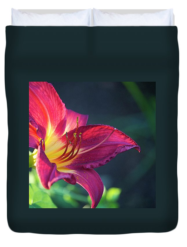 Square Duvet Cover featuring the photograph Fuchsia Glow by Debbie Karnes