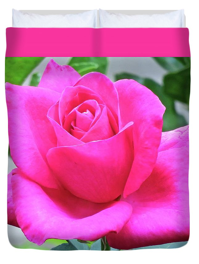 Nature Duvet Cover featuring the photograph Fuchsia Rose by Joan Laine