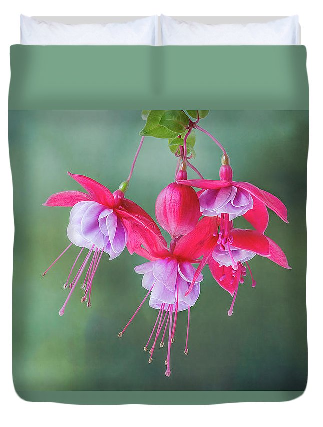 Flower Duvet Cover featuring the photograph Fuchsia Cluster #6 by Patti Deters