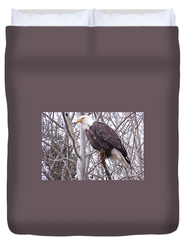 Photograph Duvet Cover featuring the photograph Full Bald Eagle by Mary Mikawoz