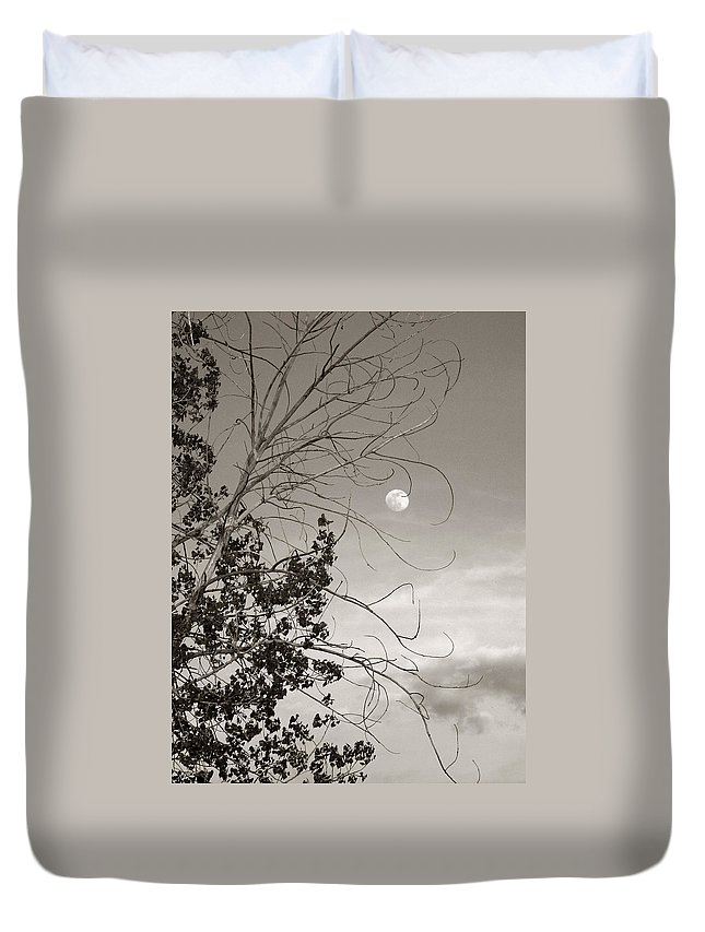 Full Duvet Cover featuring the photograph Full Moon Behind Cottonwood Tree by Marilyn Hunt