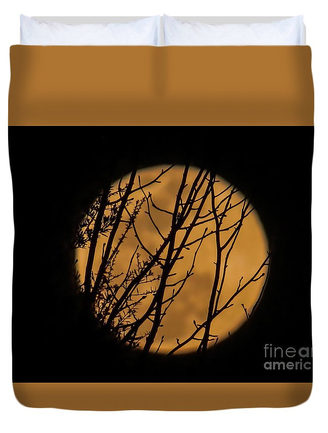 Moon Duvet Cover featuring the photograph Full Moon Through The Branches by Zina Stromberg