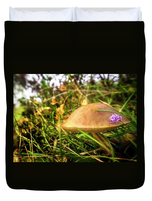 Mushroom Duvet Cover featuring the photograph Funghi, Cashel Forest by Douglas Milne