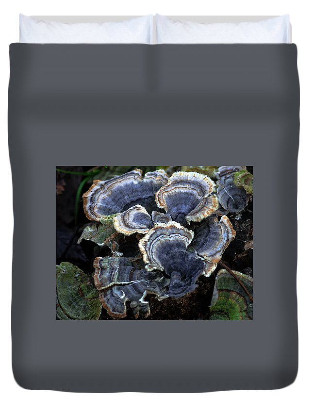Nature Duvet Cover featuring the photograph Fungi by Steve Marler
