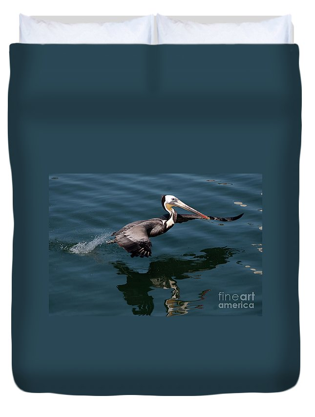 Birds Duvet Cover featuring the photograph Funky Wings by Rod Wiens