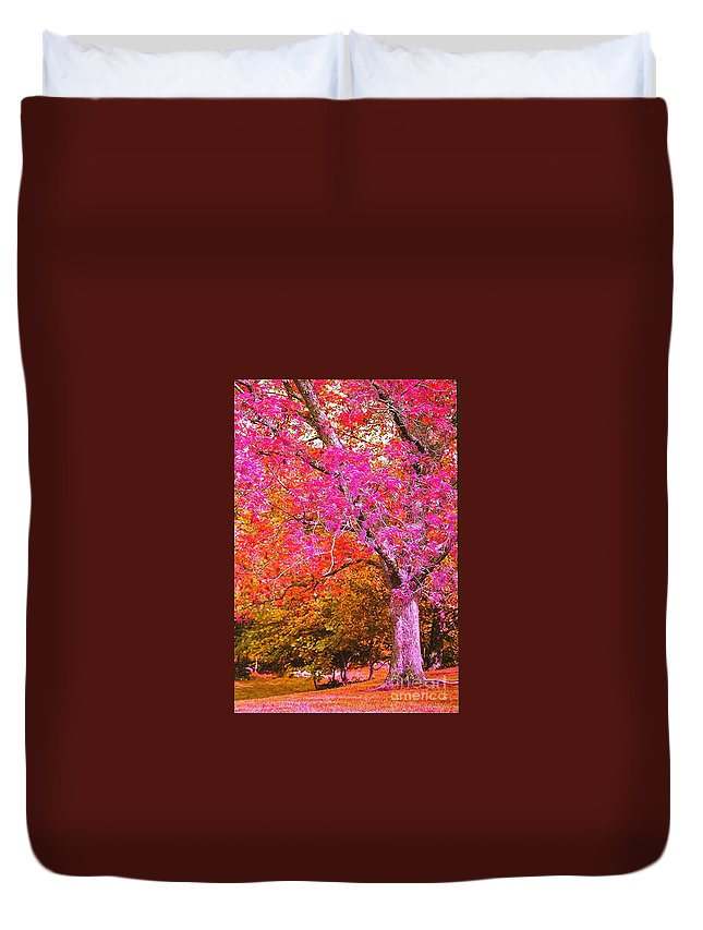 Fuschia Duvet Cover featuring the photograph Fuschia Tree by Nadine Rippelmeyer
