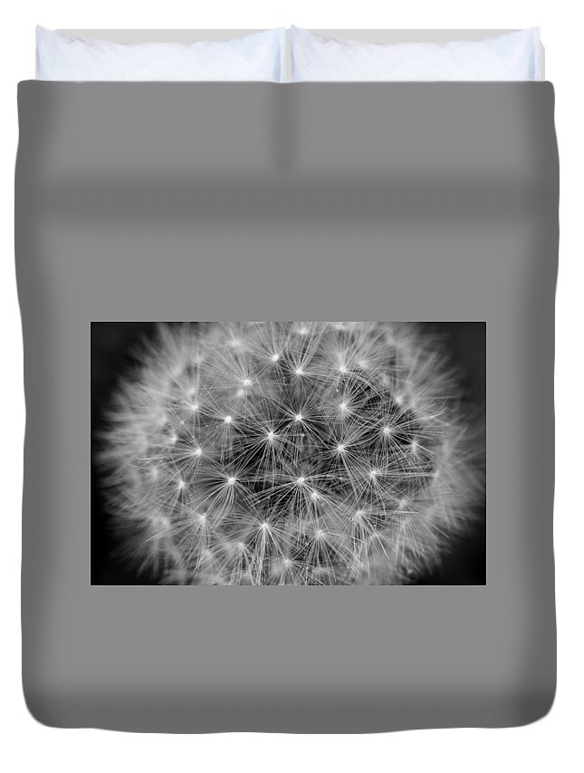 Dandelion Duvet Cover featuring the photograph Fuzzy - Black And White by Angela Rath