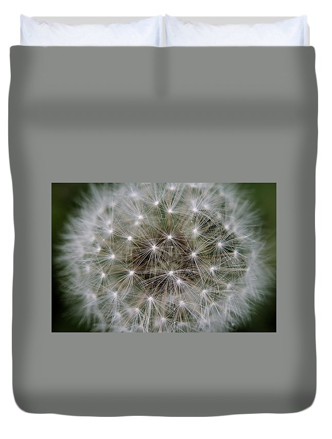 Dandelion Duvet Cover featuring the photograph Fuzzy by Angela Rath