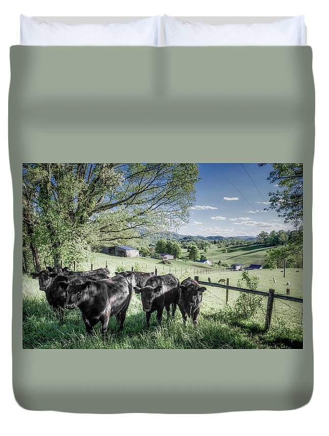 Farm Life Duvet Cover featuring the photograph Gang Of Six by Jim Love
