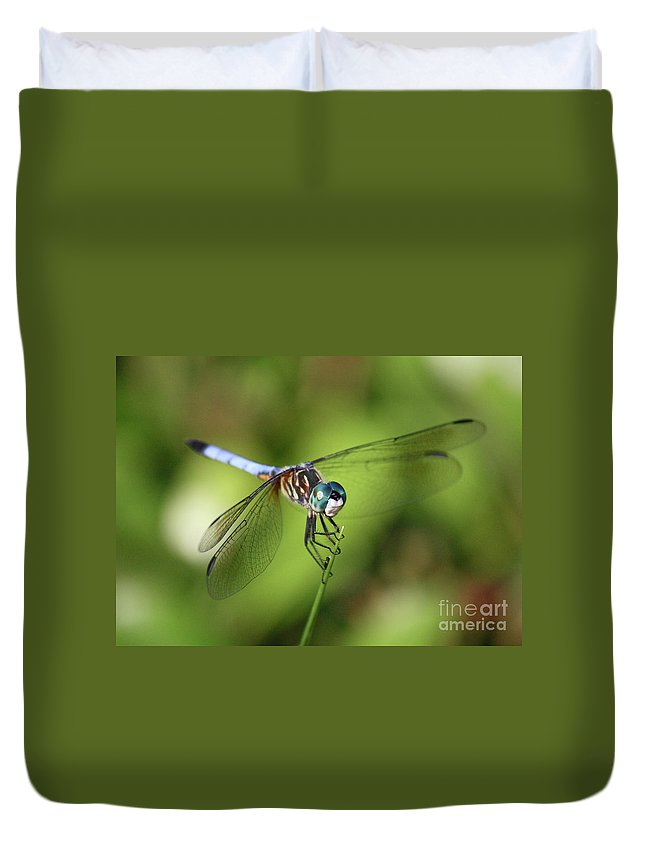 Dragonfly Duvet Cover featuring the photograph Garden Dragonfly by Carol Groenen