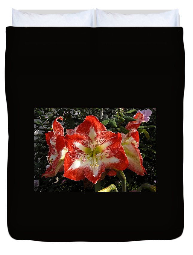 Garden Duvet Cover featuring the photograph Garden Flowers by David Lee Thompson