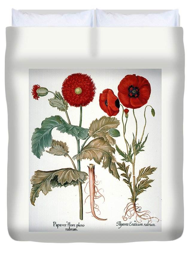 1613 Duvet Cover featuring the photograph Garden Poppy by Granger