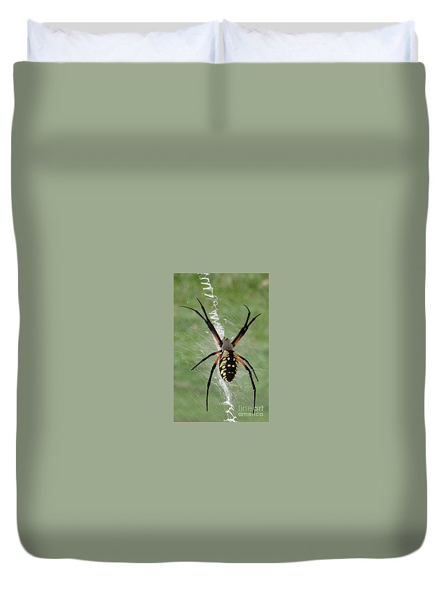 Spider Duvet Cover featuring the photograph Garden Spider by Deb Rassel