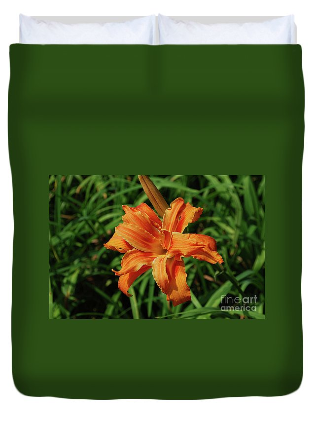 Lily Duvet Cover featuring the photograph Garden With A Blooming Double Daylily Flowering by DejaVu Designs