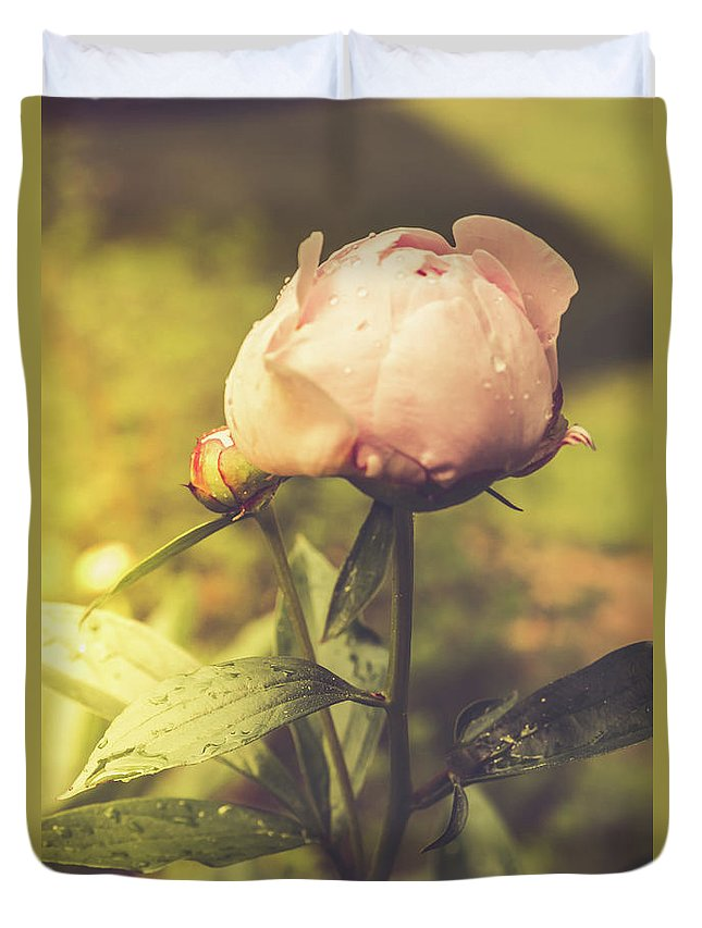 Pink Duvet Cover featuring the photograph Gardenia by Debbie Gracy
