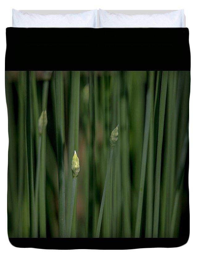Garden Duvet Cover featuring the photograph Garlic Chive Season by Dennis R Bean