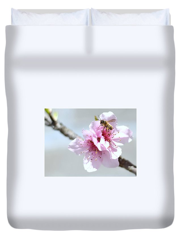 Honey Bee Duvet Cover featuring the photograph Gathering by Glenda Ward