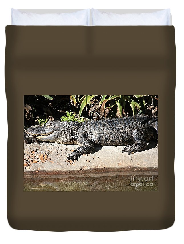 Gator Duvet Cover featuring the photograph Gator by Carol Groenen
