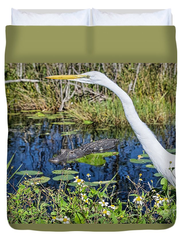 Great White Egrets Duvet Cover featuring the photograph Gator In Waiting by Judy Kay