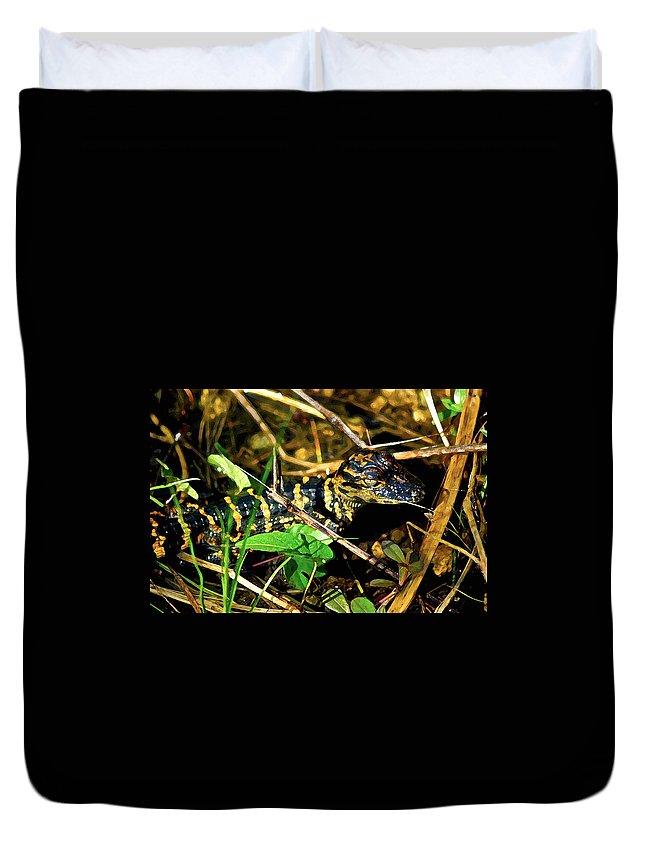Alligators Duvet Cover featuring the digital art Gator Paint by Dale Chapel