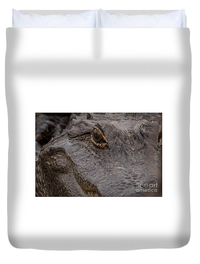 Gator Duvet Cover featuring the digital art Gators Eye by Bakedography Art