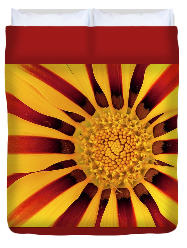 Flowers Duvet Cover featuring the photograph Gazania by George Sanquist