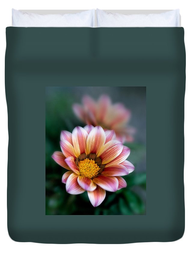 Bloom Duvet Cover featuring the photograph Gazania Petals Vii by David and Carol Kelly