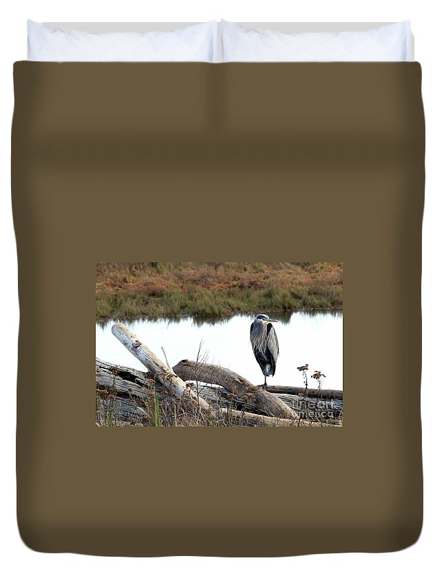 Great Blue Heron Duvet Cover featuring the photograph Gbh On Log by Sharon Talson