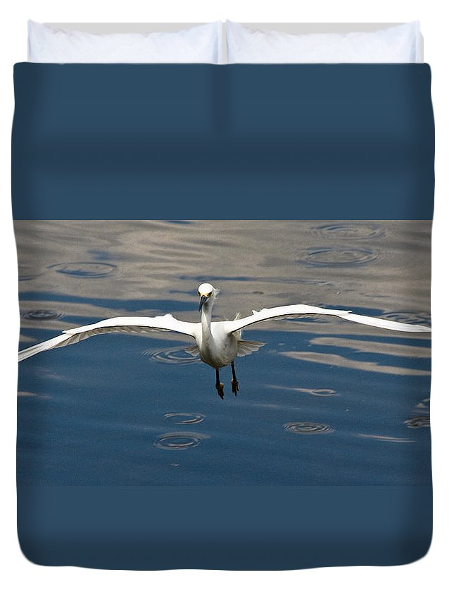 Snowy Egret Duvet Cover featuring the photograph Gear Down by Christopher Holmes