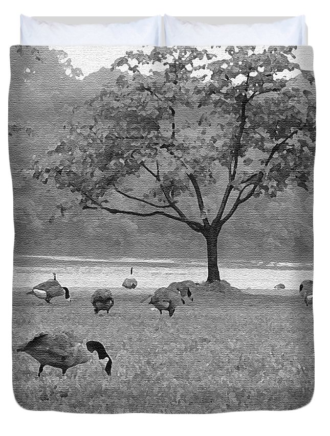 Philadelphia Duvet Cover featuring the photograph Geese On A Rainy Day by Bill Cannon