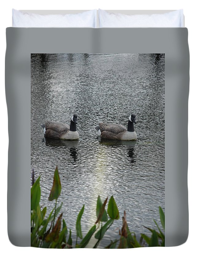 Water Duvet Cover featuring the photograph Geese by Rob Hans