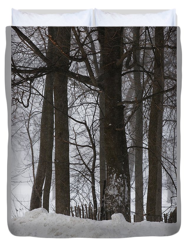 Woods Duvet Cover featuring the photograph Gentle Giants by Linda Shafer