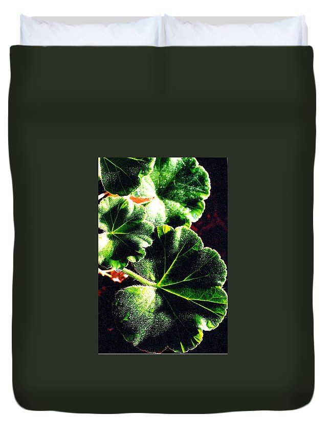 Geraniums Duvet Cover featuring the photograph Geranium Leaves by Nancy Mueller