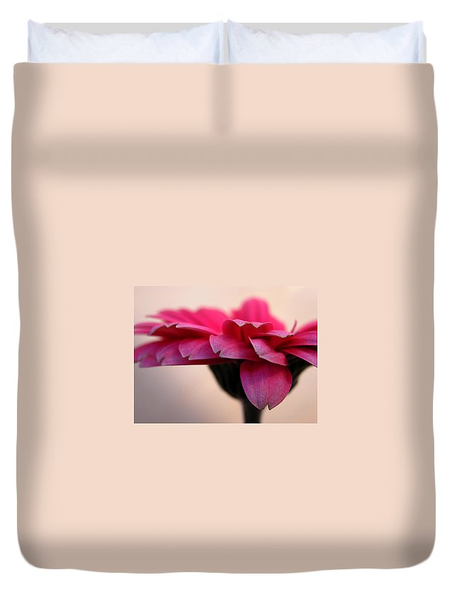 Pink Flower Duvet Cover featuring the photograph Gerbera Daisy by Carol Milisen