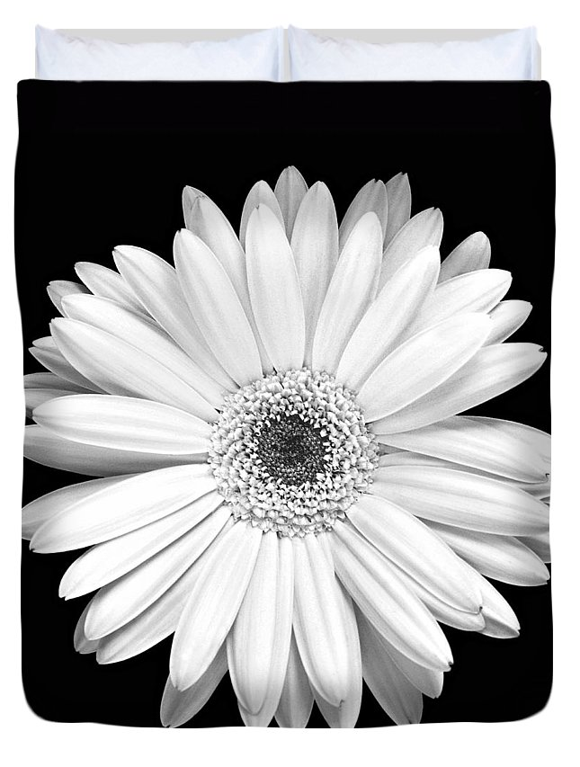 Gerber Duvet Cover featuring the photograph Single Gerbera Daisy by Marilyn Hunt