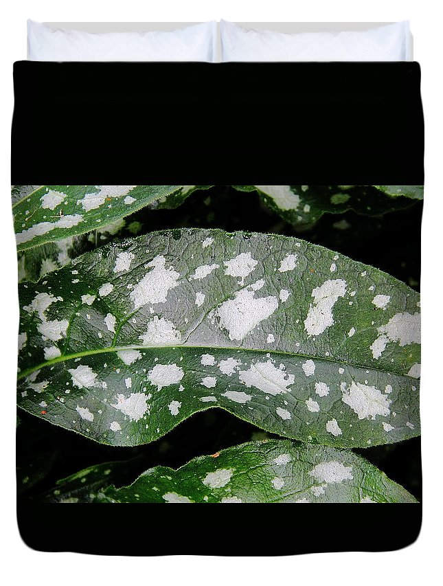 Plant Duvet Cover featuring the photograph Lungwort by Allen Nice-Webb