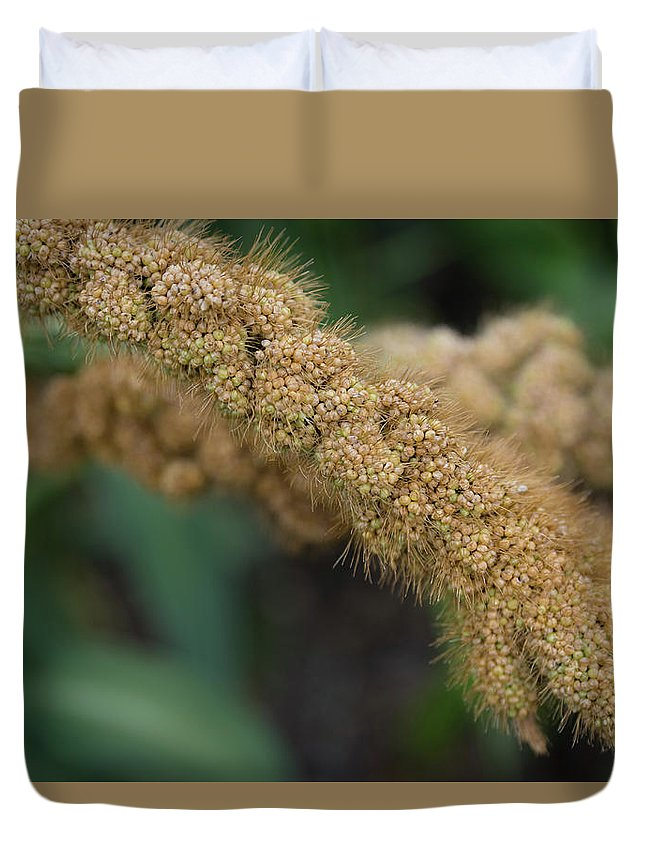 Food Duvet Cover featuring the photograph German Millet by Monika Tymanowska