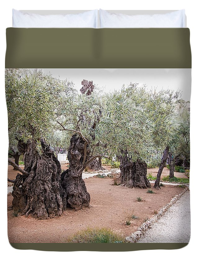 Gethsemane Duvet Cover featuring the photograph Gethsemane by Steve Tredway