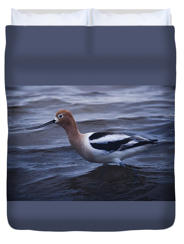 Bird Duvet Cover featuring the photograph Getting Too Deep by Steve Marler