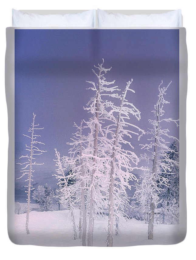 North America Duvet Cover featuring the photograph Ghost Trees Yellowstone National Park by Dave Welling