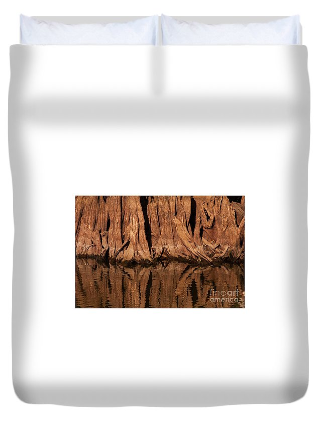 Reelfoot Lake State Park Duvet Cover featuring the photograph Giant Cypress Tree Trunk And Reflection by Bob Phillips