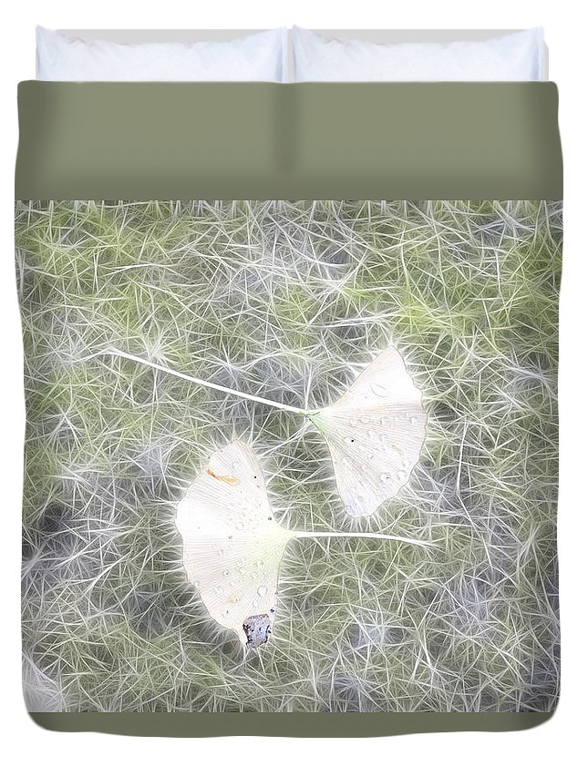 Gingko Duvet Cover featuring the photograph Gingko Leaves by Hugh Smith