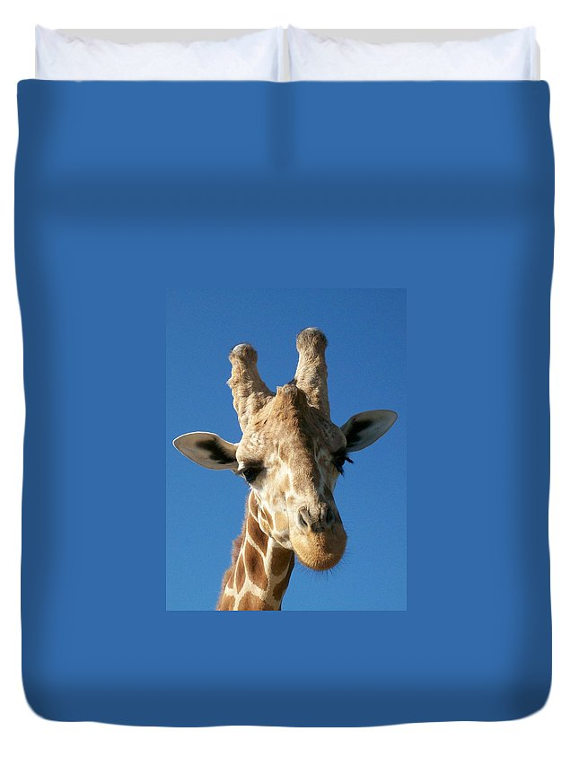 Giraffe Duvet Cover featuring the photograph Giraffe 2 by Sara Raber