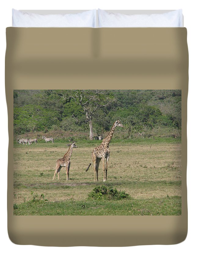 Giraffe Baby Africa Tanzania Mother Duvet Cover featuring the photograph Giraffe Baby by Diane Barone